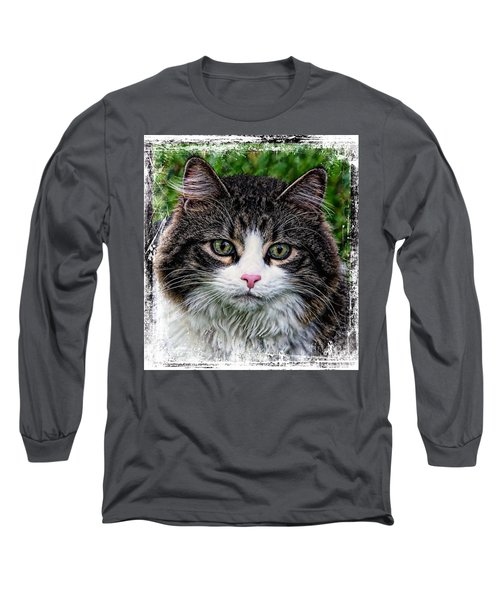 Decorative Maine Coon Cat A4122016 Long Sleeve T-Shirt