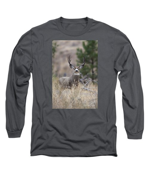 Deep Forest Long Sleeve T-Shirt