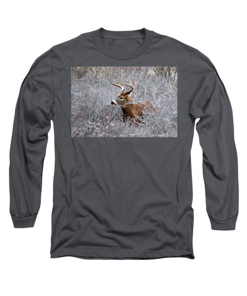 Deer On A Frosty Morning  Long Sleeve T-Shirt by Nancy Landry