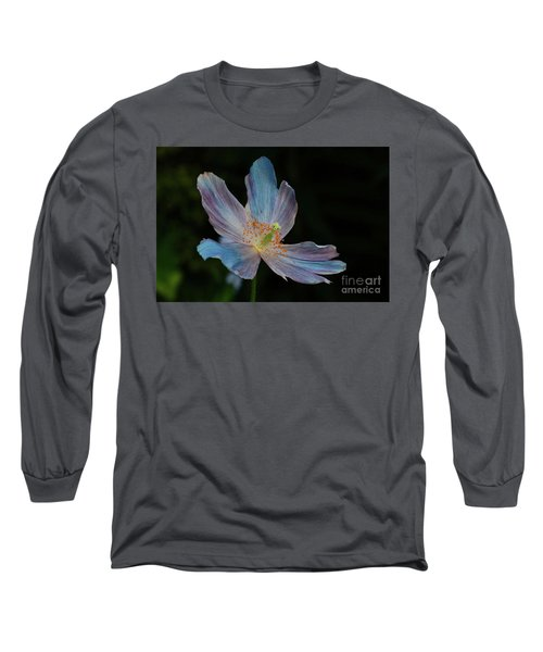 Delicate Blue Long Sleeve T-Shirt