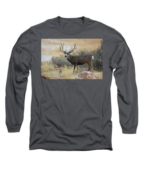 Desert Beast Long Sleeve T-Shirt
