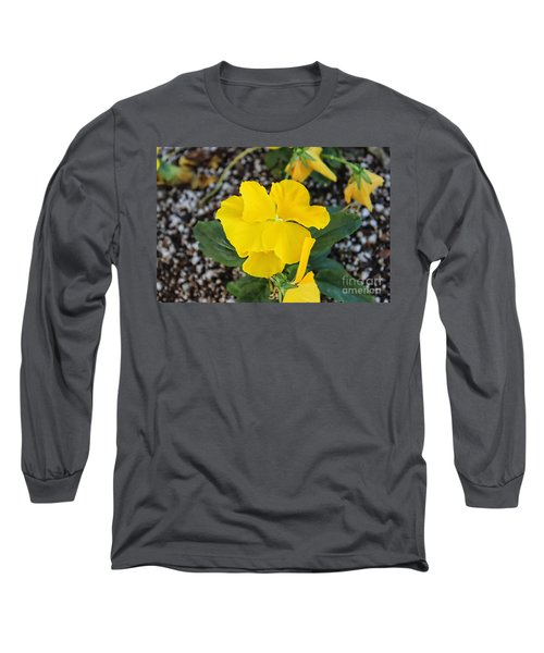 Desert Beauty Long Sleeve T-Shirt by Roberta Byram