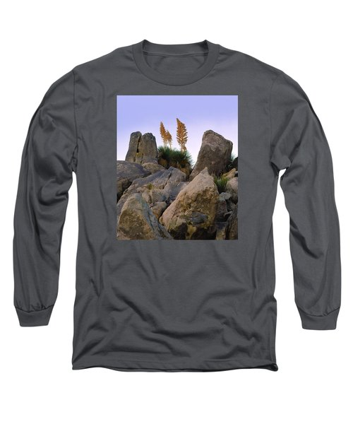 Desert Flags Long Sleeve T-Shirt
