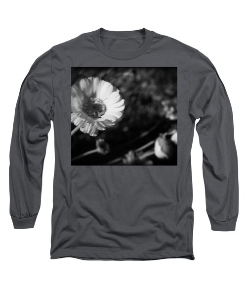 Desert Flower In Holga Mood Long Sleeve T-Shirt