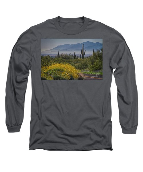 Desert Springtime Long Sleeve T-Shirt by Anne Rodkin