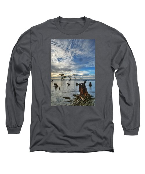 Desolation Long Sleeve T-Shirt by Robert Charity