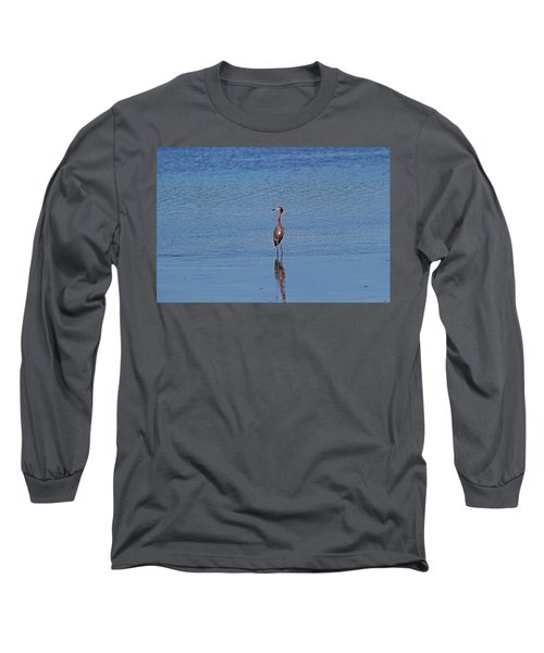Long Sleeve T-Shirt featuring the photograph Ding Darling's Number One IIi by Michiale Schneider