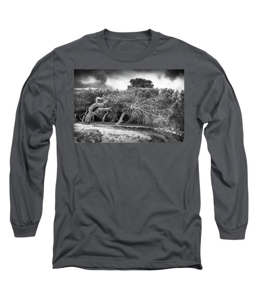 Distorted Trees Long Sleeve T-Shirt