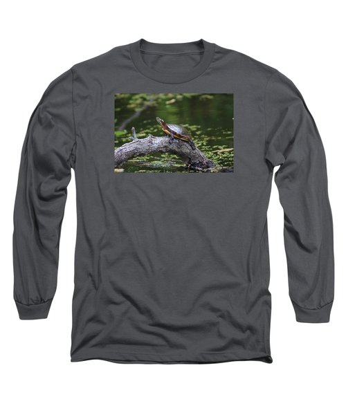 Do I Smell Bacon? Long Sleeve T-Shirt