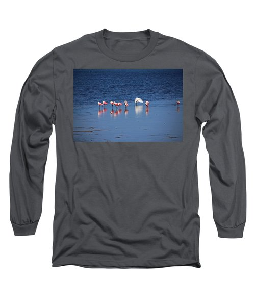 Long Sleeve T-Shirt featuring the photograph Do What You Wanna Do by Michiale Schneider
