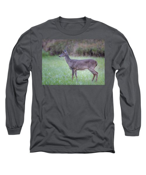 Long Sleeve T-Shirt featuring the photograph Doe In Cades Cove by Tyson Smith