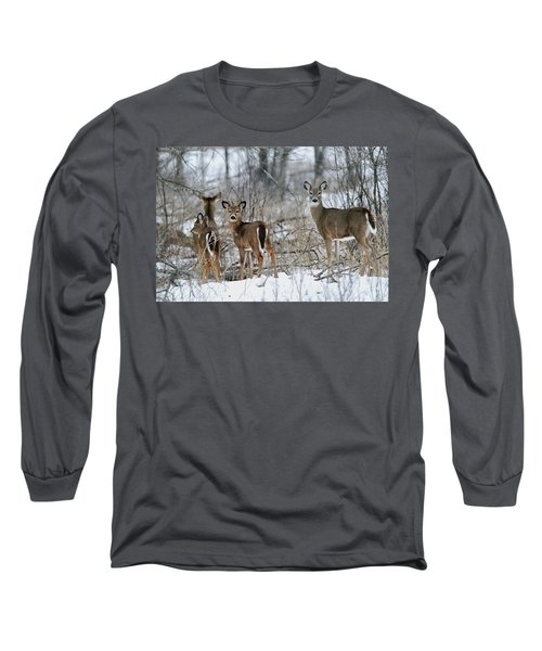 Does And Fawns Long Sleeve T-Shirt by Brook Burling