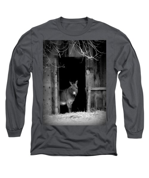 Long Sleeve T-Shirt featuring the painting Donkey In The Doorway by Michael Dohnalek
