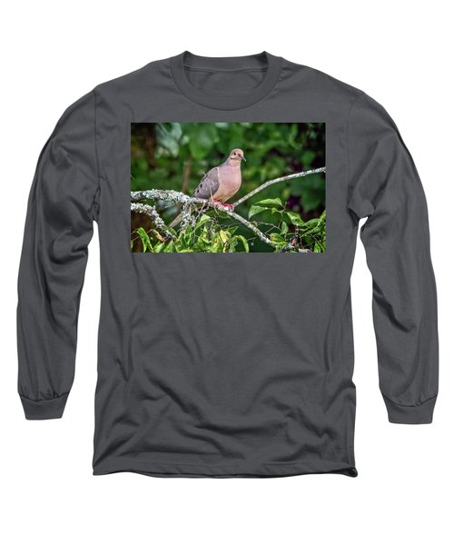 Dove On A Branch Long Sleeve T-Shirt