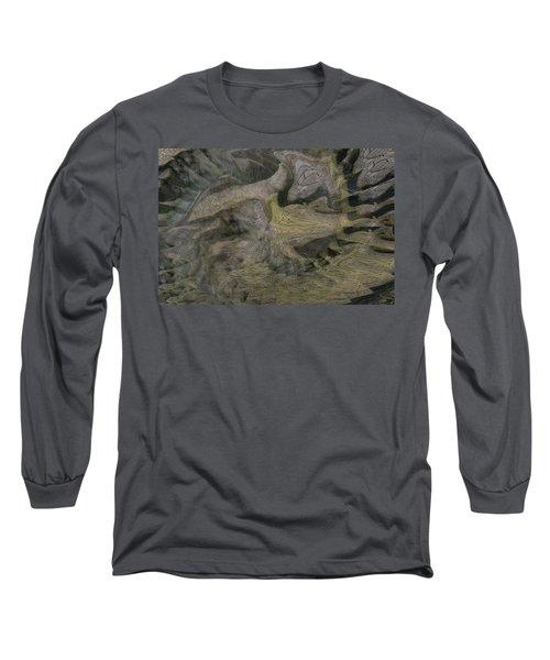 Dragon Fury Long Sleeve T-Shirt