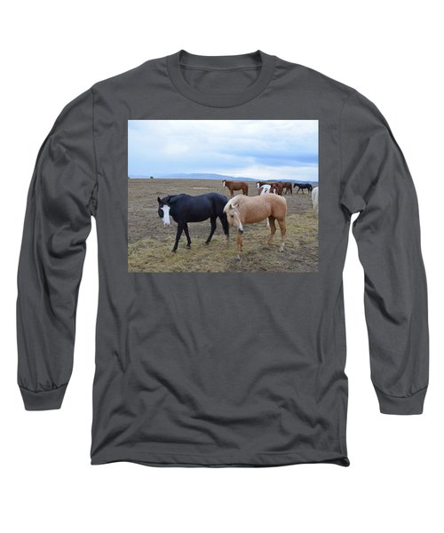 Dreaming Of Wild Horses Long Sleeve T-Shirt