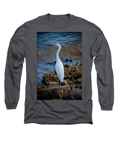 Eager Egret Long Sleeve T-Shirt by DigiArt Diaries by Vicky B Fuller