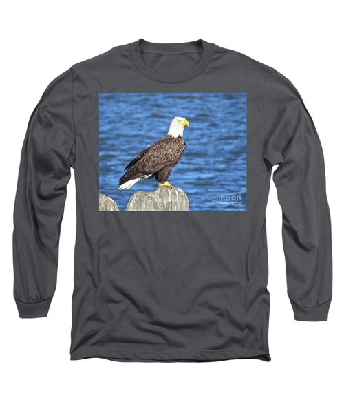 Long Sleeve T-Shirt featuring the photograph Eagle At East Point  by Nancy Patterson