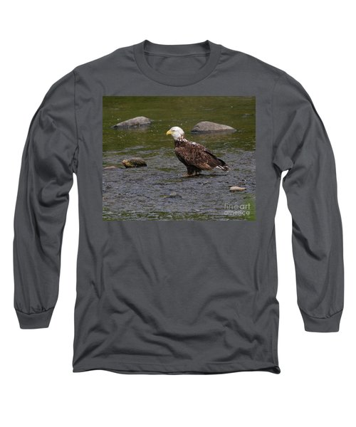 Long Sleeve T-Shirt featuring the photograph Eagle Deep In Thought by Debbie Stahre