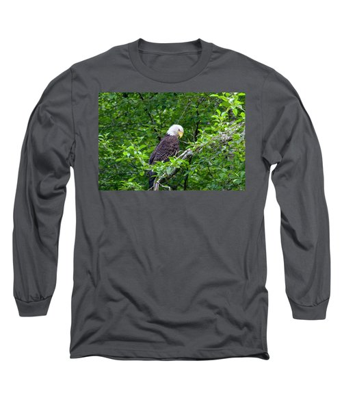 Eagle In The Tree Long Sleeve T-Shirt