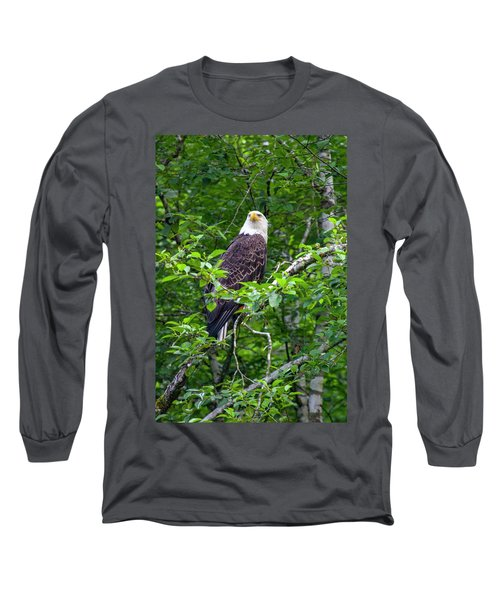 Eagle In Tree Long Sleeve T-Shirt