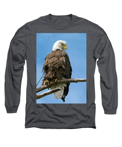 Eagle On Perch Long Sleeve T-Shirt
