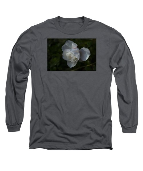 Early Morning Rose Long Sleeve T-Shirt by Dan Hefle