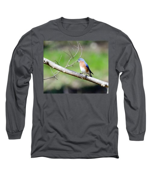 Long Sleeve T-Shirt featuring the photograph Eastern Bluebird by George Randy Bass
