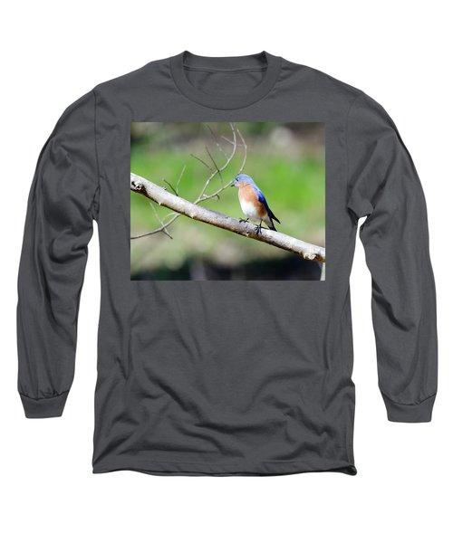 Eastern Bluebird Long Sleeve T-Shirt by George Randy Bass