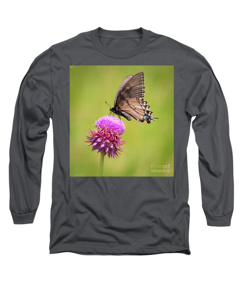 Long Sleeve T-Shirt featuring the photograph Eastern Tiger Swallowtail Dark Form  by Ricky L Jones