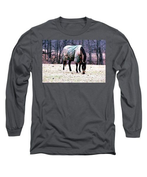 Long Sleeve T-Shirt featuring the photograph Eatin' Snowy Grass by Polly Peacock