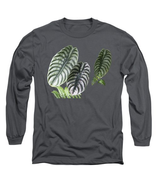 Elephant Ears Transparency Long Sleeve T-Shirt