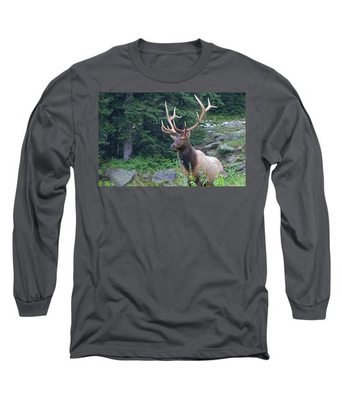 Long Sleeve T-Shirt featuring the photograph Elk 4 by Gary Lengyel