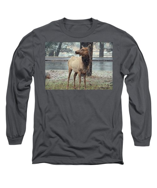 Elk In The Snow Long Sleeve T-Shirt by Debby Pueschel