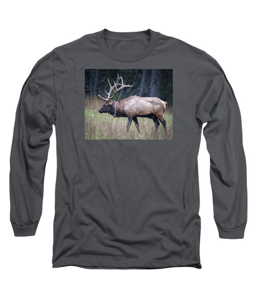 Long Sleeve T-Shirt featuring the photograph Elk by Tyson and Kathy Smith