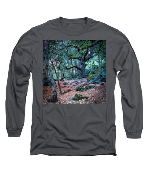 Enchanted Long Sleeve T-Shirt by Jerry Golab