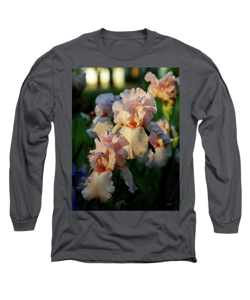 End Of Day Pink Irises 6702 H_2 Long Sleeve T-Shirt