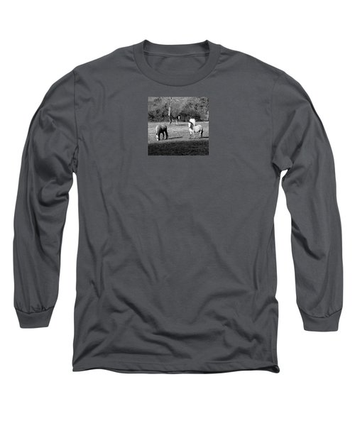 English Horses Long Sleeve T-Shirt