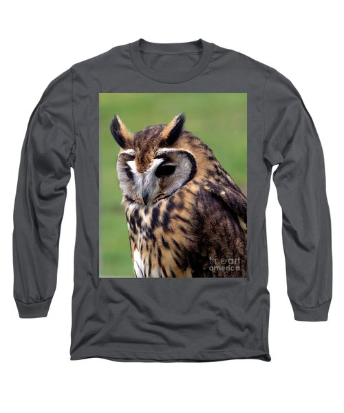 Eurasian Striped  Owl Long Sleeve T-Shirt by Stephen Melia