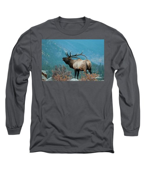 Evening Call Long Sleeve T-Shirt