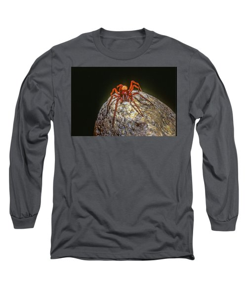 Somebody You Shouldn't Mess With Long Sleeve T-Shirt by John Brink