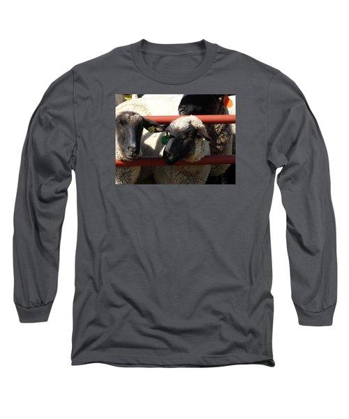 Ewe Gate Long Sleeve T-Shirt by J L Zarek
