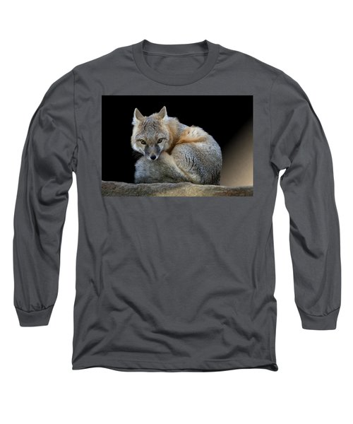 Eyes Of The Fox Long Sleeve T-Shirt