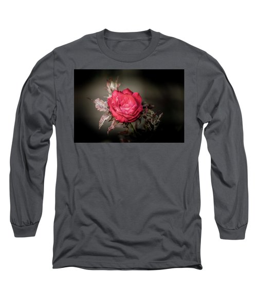 Fading Beauty Long Sleeve T-Shirt