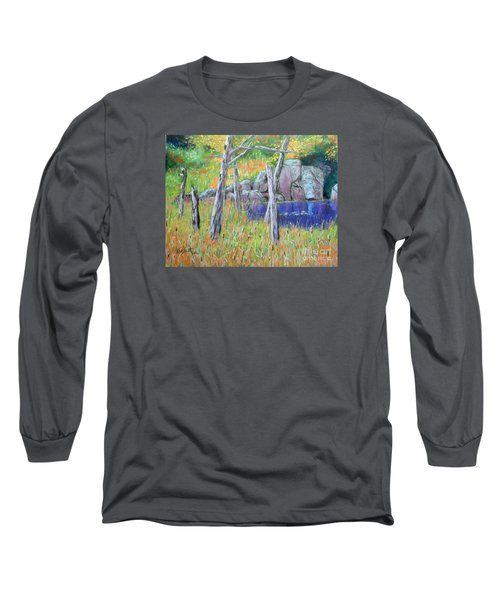 Fall  Along The Highwy  Long Sleeve T-Shirt by Rae  Smith