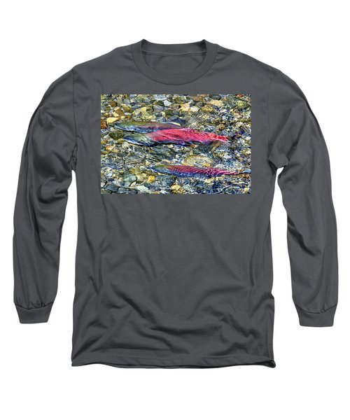 Long Sleeve T-Shirt featuring the photograph Fall Colors by David Lawson
