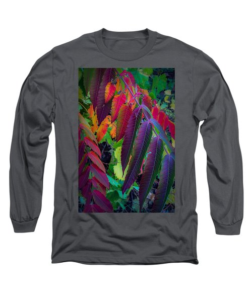 Fall Feathers Long Sleeve T-Shirt