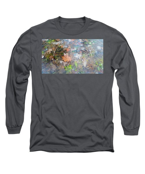 Fall Leaves In A Frozen Puddle Long Sleeve T-Shirt