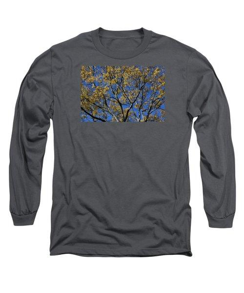 Fall Splendor And Glory Long Sleeve T-Shirt by Deborah  Crew-Johnson