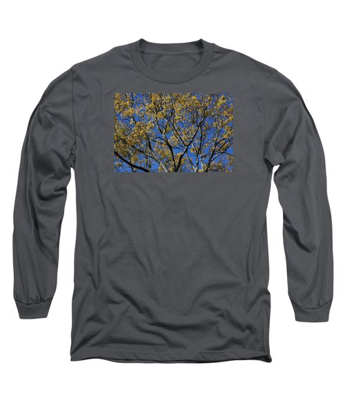 Fall Splendor And Glory Long Sleeve T-Shirt